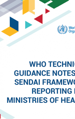 WHO technical guidance notes on Sendai framework reporting for ministries of health