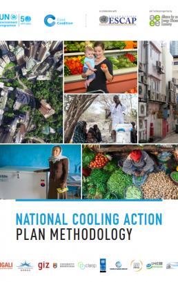 National Cooling Action Plan Methodology
