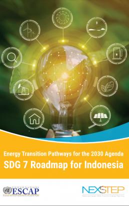 Energy Transition Pathways for the 2030 Agenda: SDG7 Roadmap for Indonesia