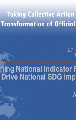 Strengthening National Indicator Frameworks to Drive National SDG Implementation: Moving Forward
